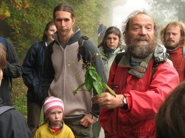 Šuspa drží netýkavku malokvětou (Impatiens parviflora ...